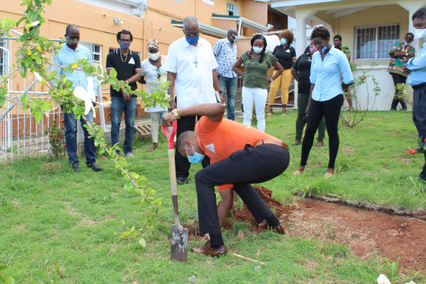 GDB Turns 55 and plants a tree